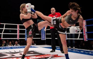 Kickboxing – Les règles