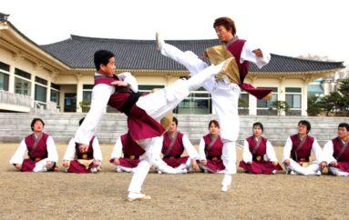 Qu'est-ce que le Taekkyon ?