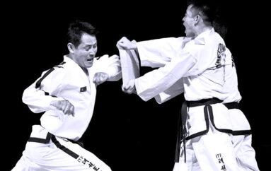 Taekwondo – Kyokpa (la casse)